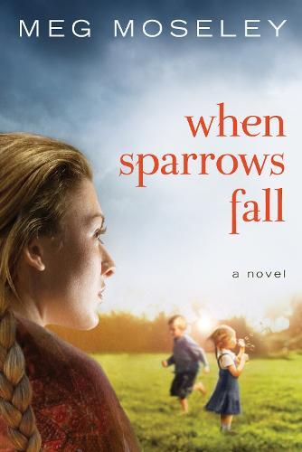 When Sparrows Fall: A Novel (Paperback)