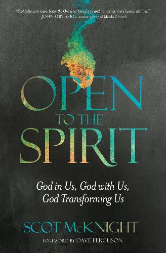 Open to the Spirit: God in Us, God with Us, God Transforming Us (Paperback)