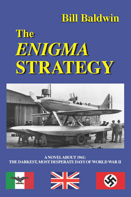 THE Enigma Strategy (Paperback)