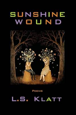 Sunshine Wound (Paperback)
