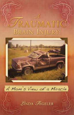A Traumatic Brain Injury (Paperback)