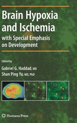 Brain Hypoxia and Ischemia - Contemporary Clinical Neuroscience (Hardback)