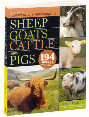 Storeys Illustrated Breed Guide to Sheep, Goats, Cattle, and Pigs [Pb] (Paperback)