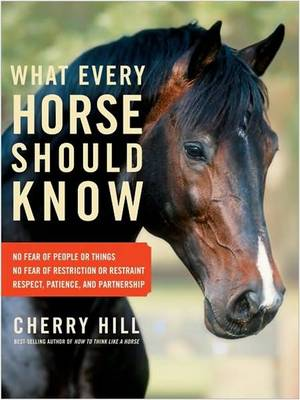 What Every Horse Should Know (Paperback)