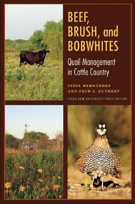 Beef, Brush, and Bobwhites: Quail Management in Cattle Country (Paperback)