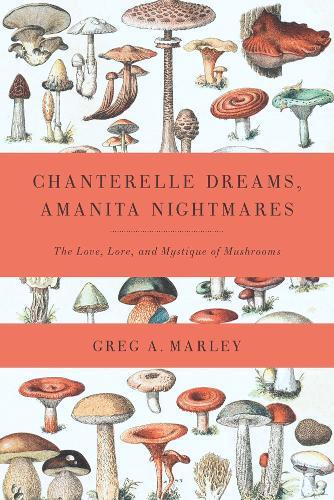 Chanterelle Dreams, Amanita Nightmares: The Love, Lore and Mystique of Mushrooms (Paperback)