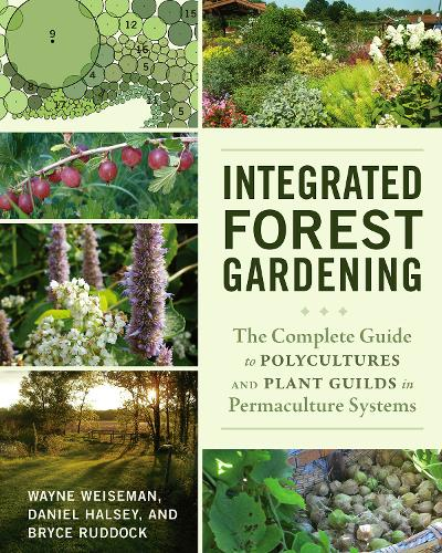 Integrated Forest Gardening: The Complete Guide to Polycultures and Plant Guilds in Permaculture Systems (Paperback)