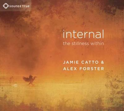 Internal: The Stillness within (CD-Audio)