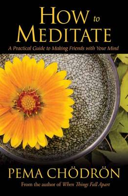 How to Meditate: A Practical Guide to Making Friends with Your Mind (Hardback)