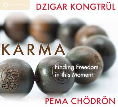 Karma: Finding Freedom in This Moment (CD-Audio)