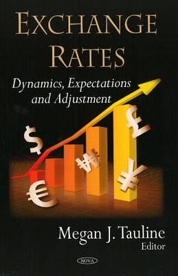Exchange Rates: Dynamics, Expectations & Adjustment (Hardback)