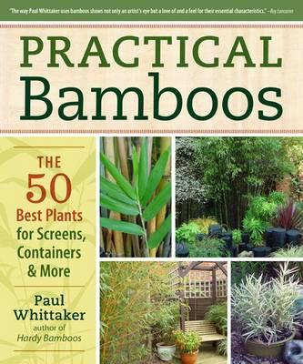 Practical Bamboos (Paperback)