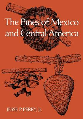 The Pines of Mexico and Central America (Paperback)