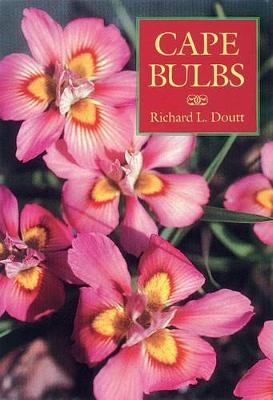 Cape Bulbs (Paperback)
