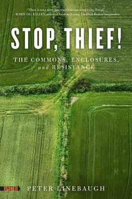 Stop, Thief!: The Commons, Enclosures, And Resistance (Paperback)
