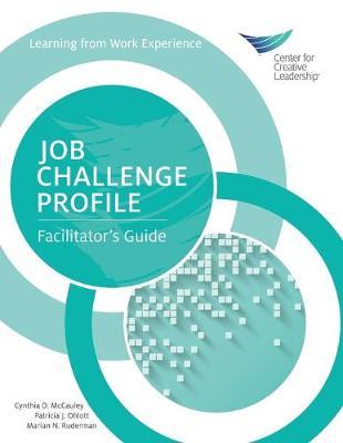 Job Challenge Profile: Facilitator's Guide (Paperback)