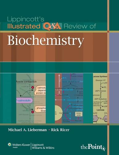 Lippincott's Illustrated Q&A Review of Biochemistry - Lippincott's Illustrated Q&A Review (Paperback)