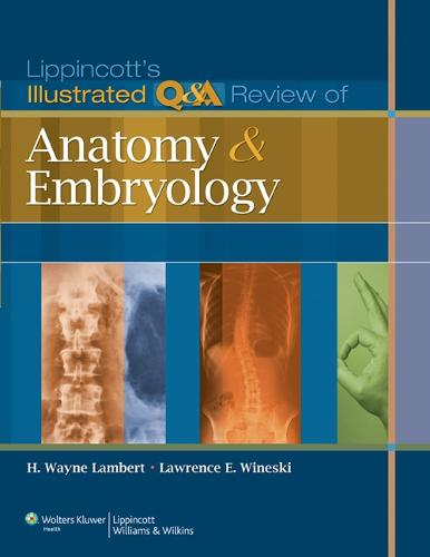 Lippincott's Illustrated Q&A Review of Anatomy and Embryology - Lippincott's Illustrated Q&A Review (Paperback)