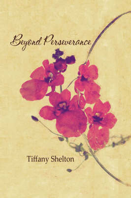 Beyond Perseverance (Paperback)