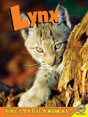 Lynx - Backyard Animals (Hardback)