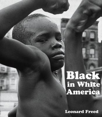 Black in White America (Hardback)