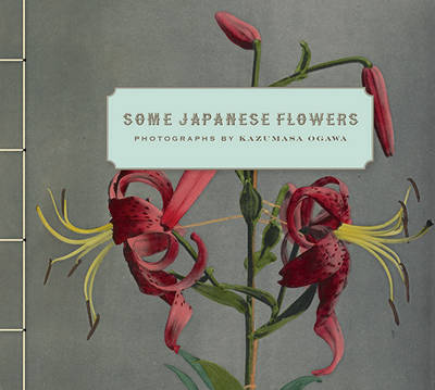 Some Japanese Flowers - Photographs by Kazumasa Ogawa (Hardback)