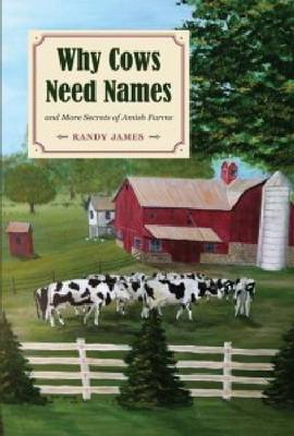 Why Cows Need Names And More Secrets of Amish Farms - Black Squirrel Books (Paperback)