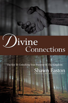 Divine Connections (Paperback)