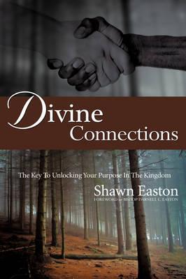 Divine Connections (Hardback)