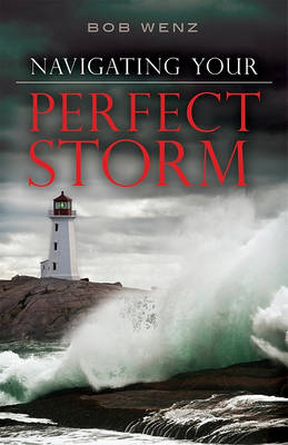 Navigating Your Perfect Storm (Paperback)