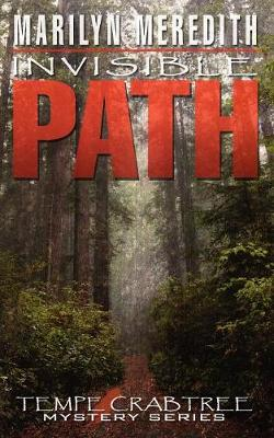 Invisible Path (Paperback)