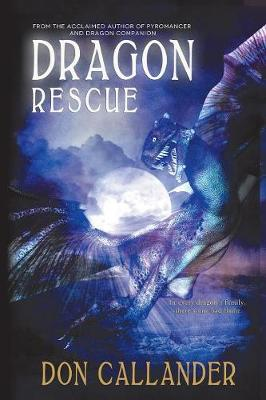 Dragon Rescue (Paperback)