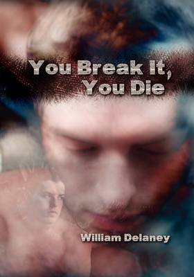 You Break It, You Die (Hardback)