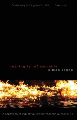 Nothing Is Inflammable (Paperback)