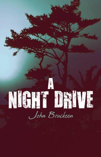 A Night Drive (Paperback)