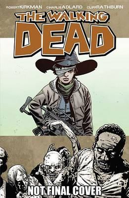 The Walking Dead Volume 18: What Comes After (Paperback)