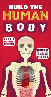 Build the Human Body - Build the Skeleton