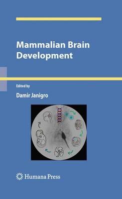Mammalian Brain Development - Contemporary Neuroscience (Hardback)
