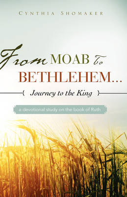 From Moab to Bethlehem...Journey to the King (Paperback)