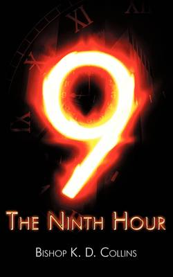 Ninth Hour (Paperback)