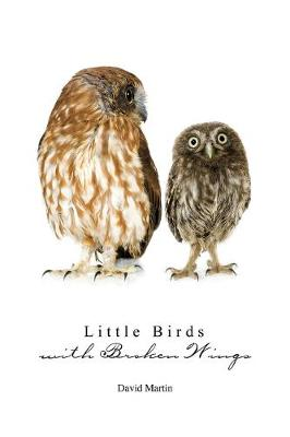 Little Birds with Broken Wings (Paperback)