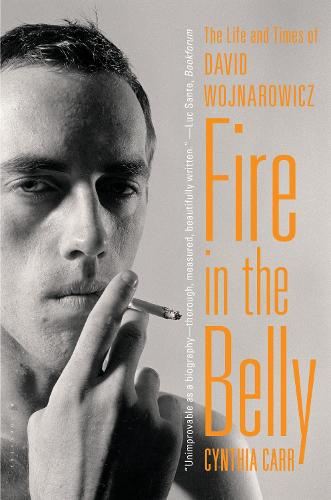 Fire in the Belly: The Life and Times of David Wojnarowicz (Paperback)