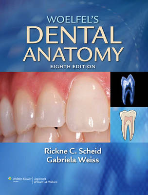 Woelfel's Dental Anatomy: Its Relevance to Dentistry (Paperback)