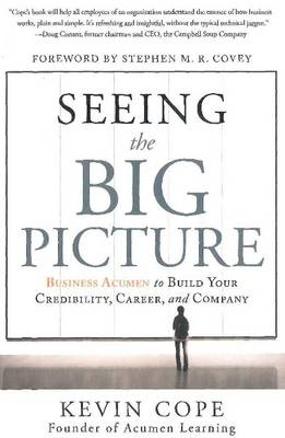 Seeing the Big Picture (Hardback)