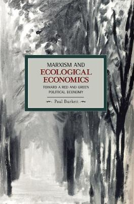Marxism And Ecological Economics: Toward A Red And Green Poltical Economy: Historical Materialism, Volume 11 - Historical Materialism (Paperback)