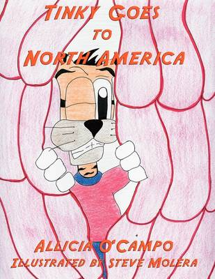 Tinky Goes to North America (Paperback)