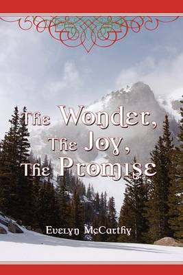The Wonder, the Joy, the Promise Stories for Christmas (Hardback)