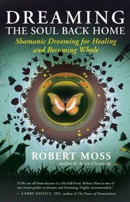 Dreaming the Soul Back Home: Shamanic Dreaming for Healing and Becoming Whole (Paperback)