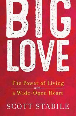 Big Love (Hardback)
