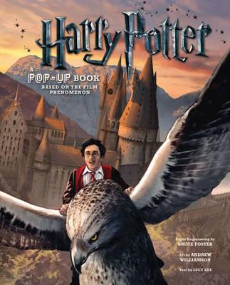 Harry Potter: A Pop-Up Book (Hardback)